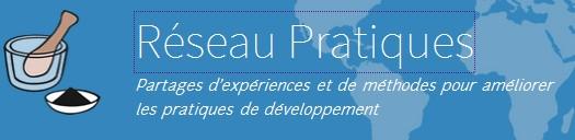 logo Pratiques site web